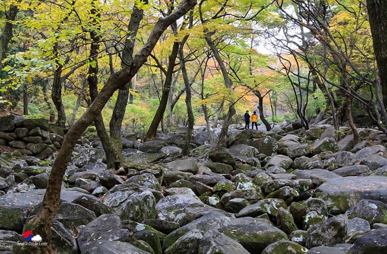 Temple Beomeosa de Busan à l'automne