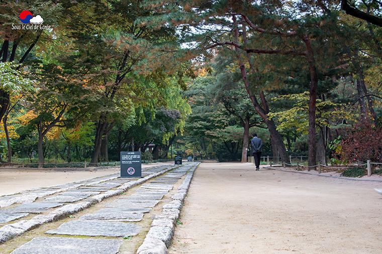 Le chemin des esprits, sanctuaire Jongmyo à Séoul