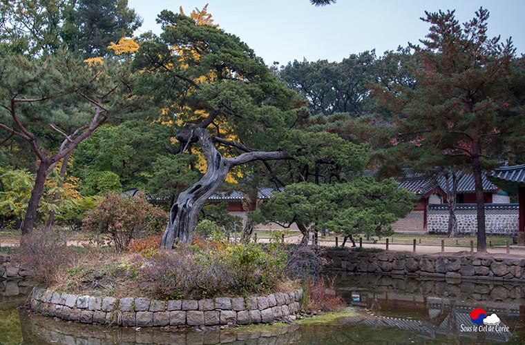 Bassin artificiel au sanctuaire de Jongmyo, à Séoul.