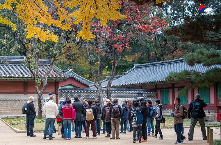Visite guidée au sanctuaire de Jongmyo, à Séoul.
