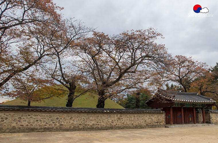 Gyeongju-tombe-roi-Michu