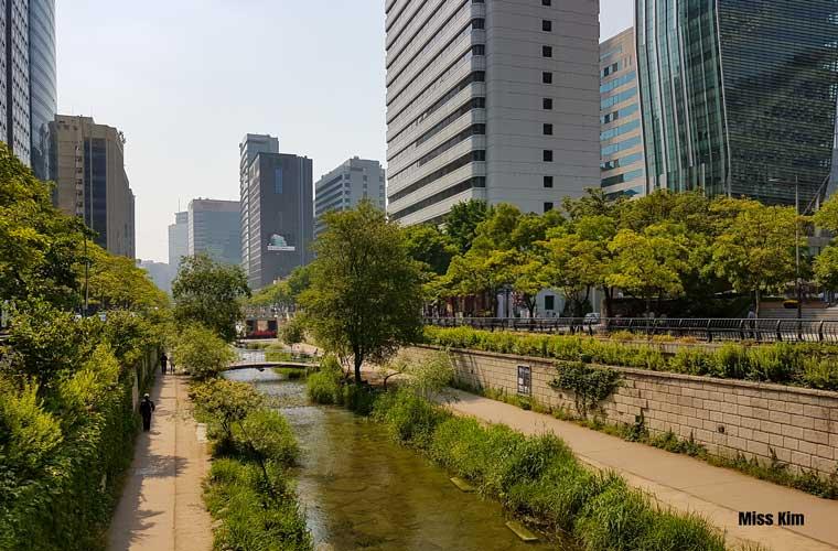 Le site de la rivière Cheonggyecheon à Séoul, en plein été.