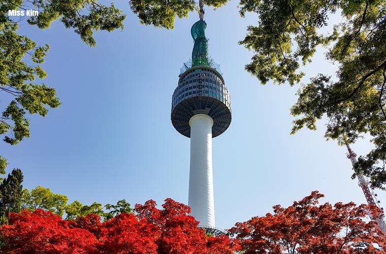 La tour Namsan entourée des feuillages rouges d'automne