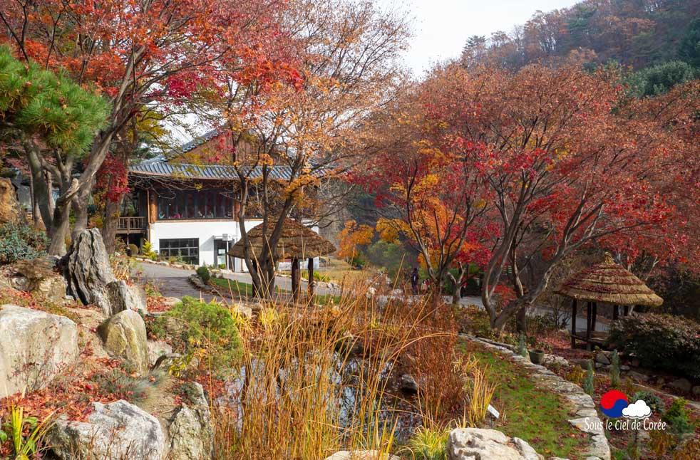 Café au Jardin du Matin calme en Corée du Sud
