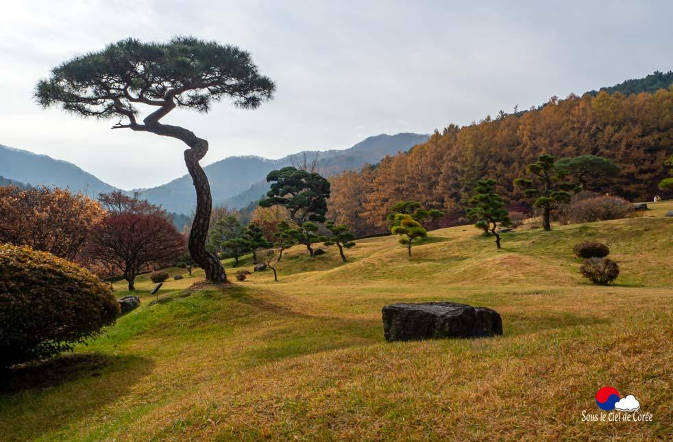 Colline du Jardin du Matin calme en Corée du Sud