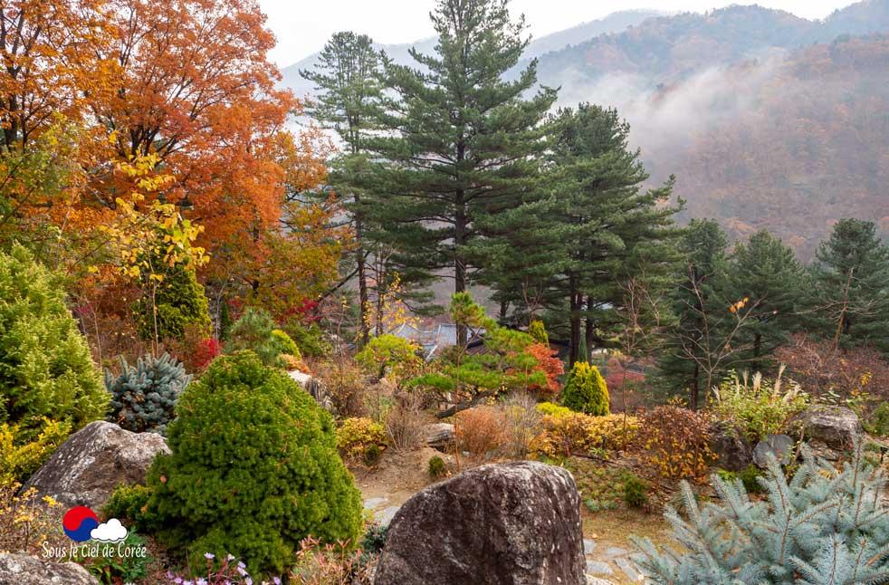 Jardin de rocaille de plantes alpines au Jardin du Matin calme en Corée du Sud
