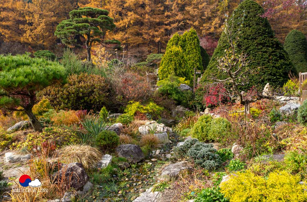 Jardin du Matin calme en Corée du Sud