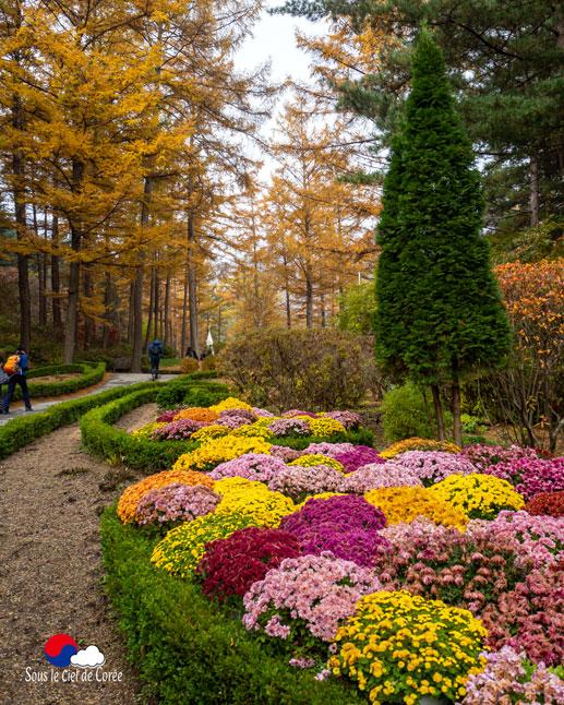 La route pour le Paradis au Jardin du matin calme en Corée du Sud