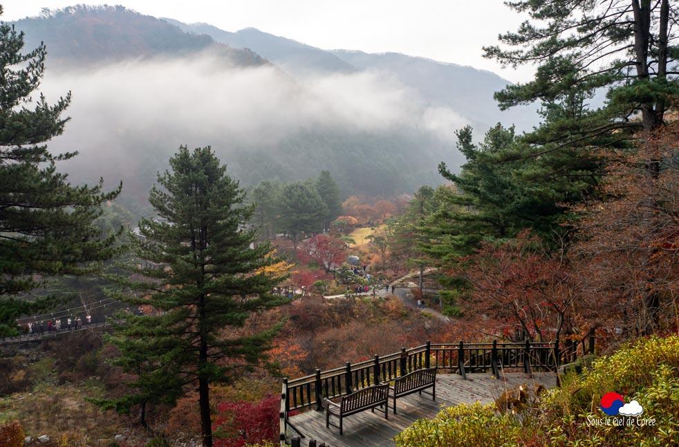 Vue panoramique sur le Jardin du Matin calme en Corée du Sud